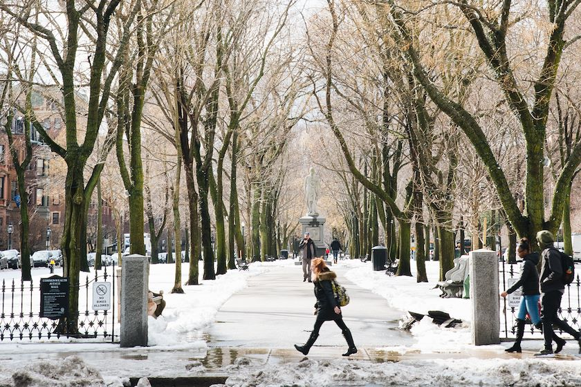 Winter Things to Do in Boston
